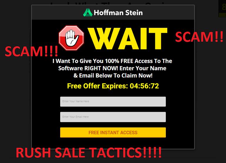 hoffmen stein scam